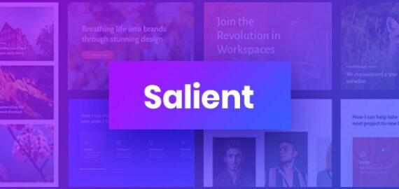 Купить перевод - Salient — Responsive Multi-Purpose Theme